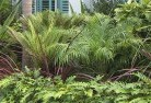 Aberdeen TAS Tropical landscaping 2